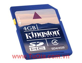 SDHC KINGSTON 4GB (class 4)