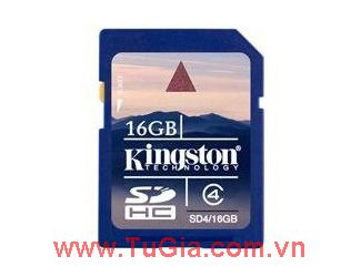 SDHC 16GB Kingston Class 4