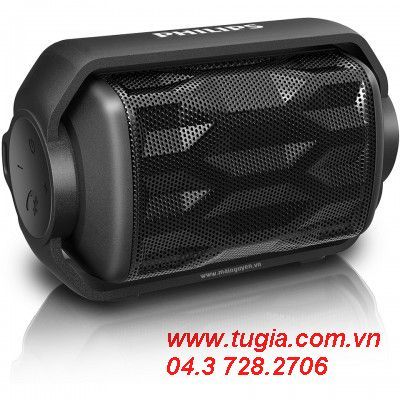 Philips Shoqbox Mini BT2200